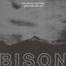 Bison - You Are Not The Ocean